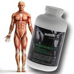Sportprodukte Aminosäuren zur Kraftsteigerung