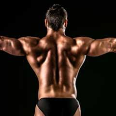 Trainingsziele Muskeln aufbauen